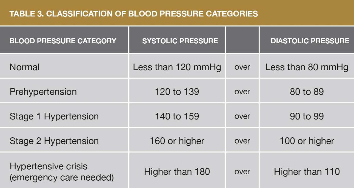 Hypertension The Heart Diving Dan Health Diving