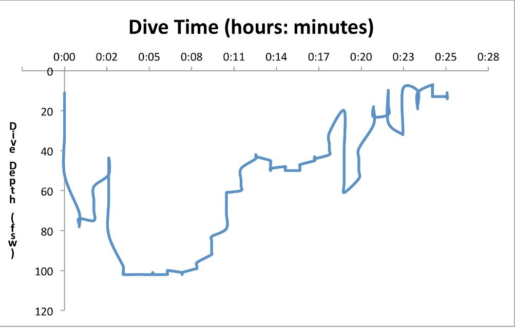 Divers Alert Network, Omitted Predive Buoyancy Check Leads to Trouble